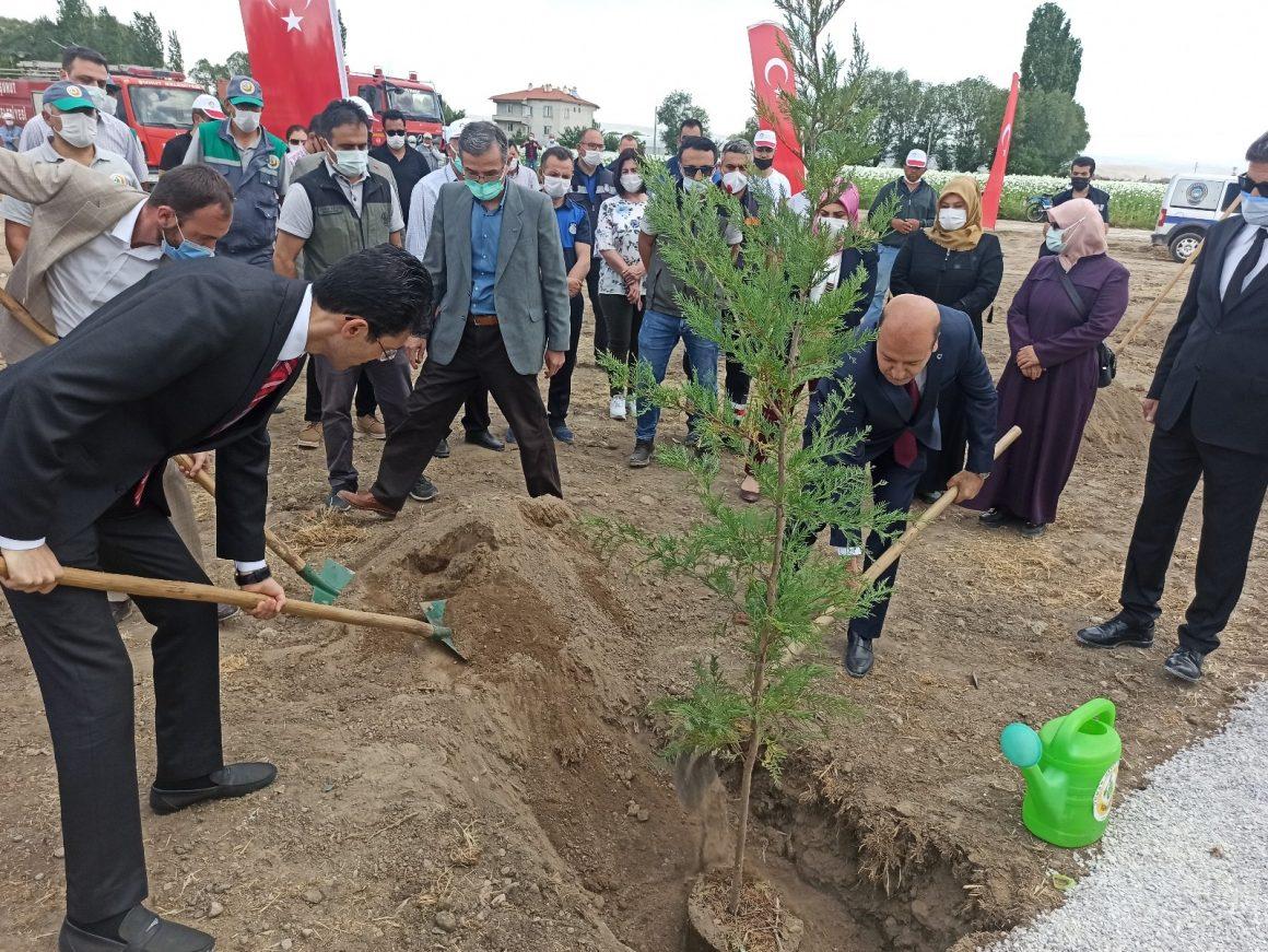 Bakan Kurum'un telekonferans katılımıyla Şuhut Millet Bahçesinde ilk fidan toprakla buluştu