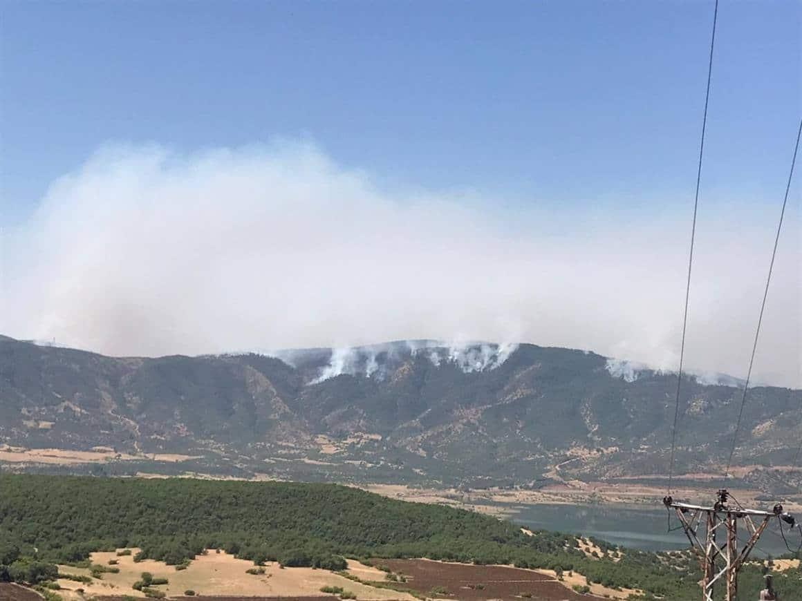 """Bingöl Valiliği: """"Yaklaşık 2 bin-2 bin 500 hektar alanın yangından etkilendiği değerlendirilmektedir"""""""