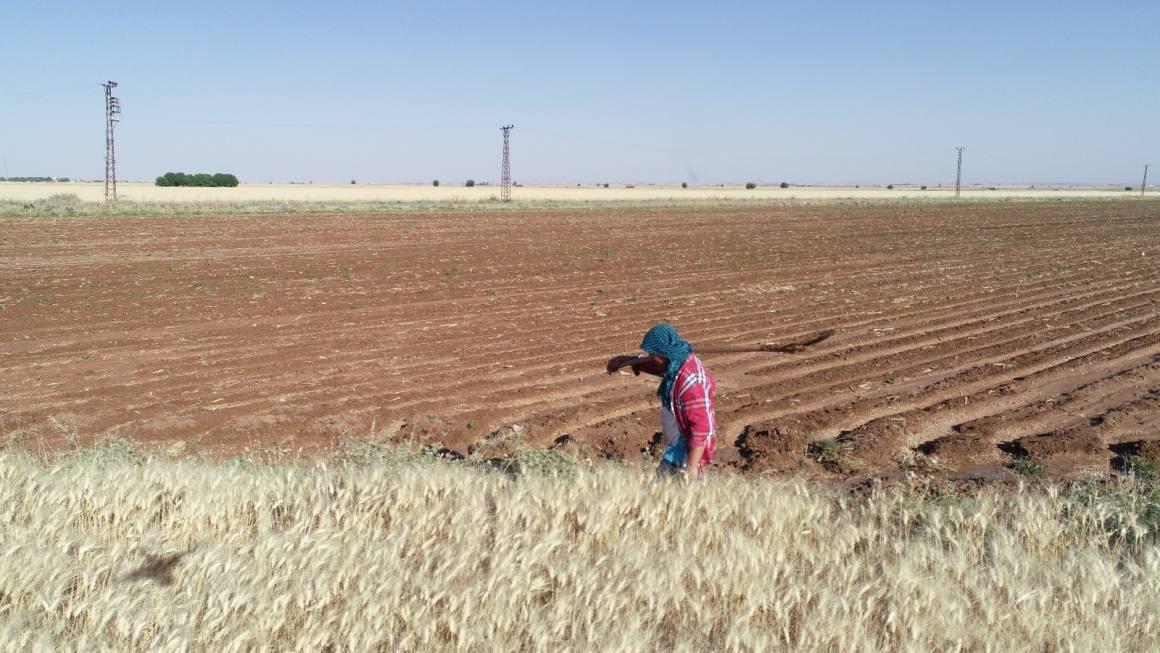 DSİ, sulama sezonu kapsamında faaliyetlerine devam ediyor
