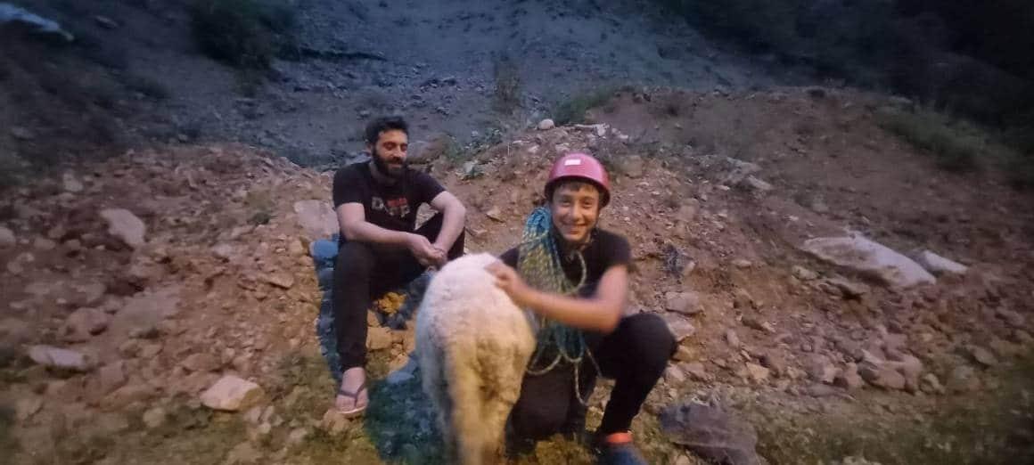 Dedesinin kayalıklarda mahsur kalan koyununu dağcı torunu kurtardı