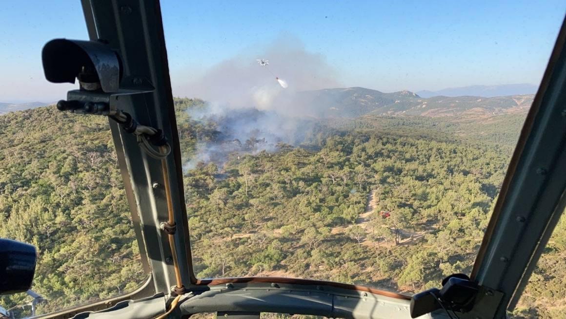 İzmir'de orman yangını kontrol altında