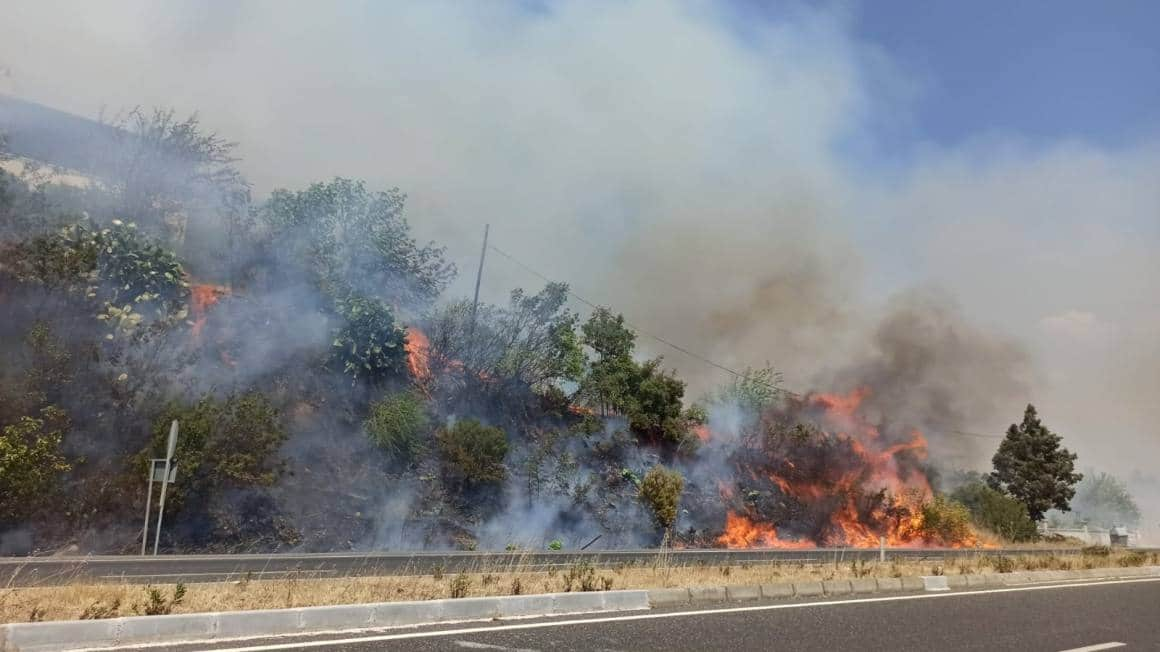 Muğla'da ormana sıçrayan yangın söndürüldü