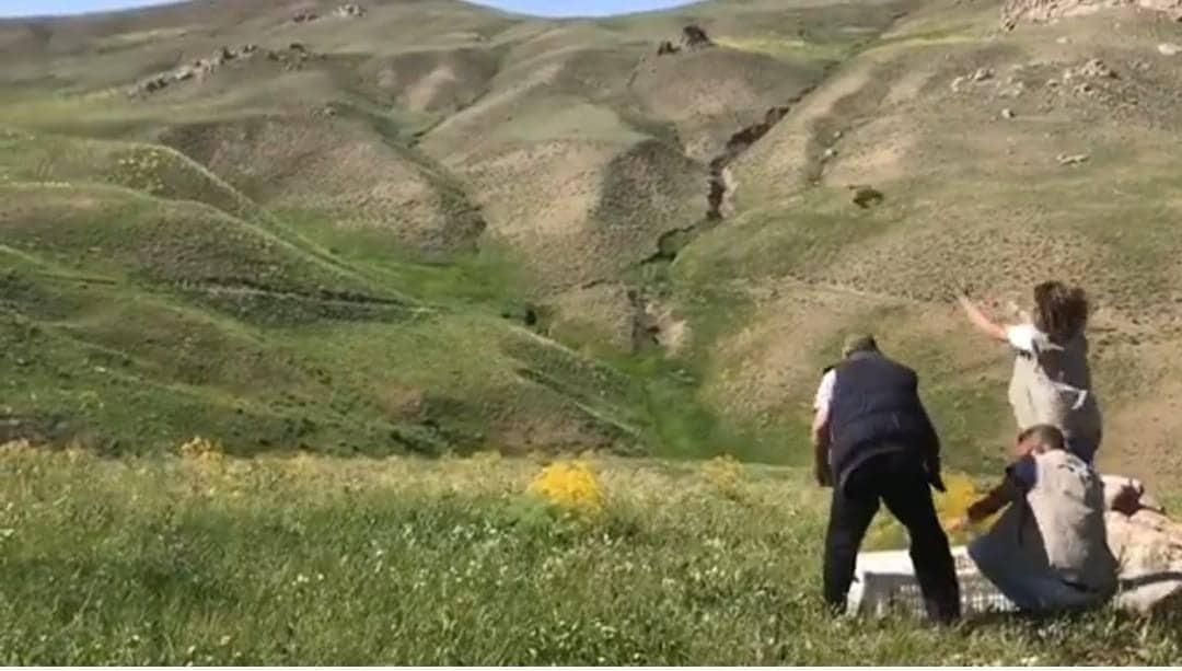Van'da 625 keklik doğaya bırakıldı